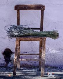 imatge 4es jornades nacionals patrimoni etnològic